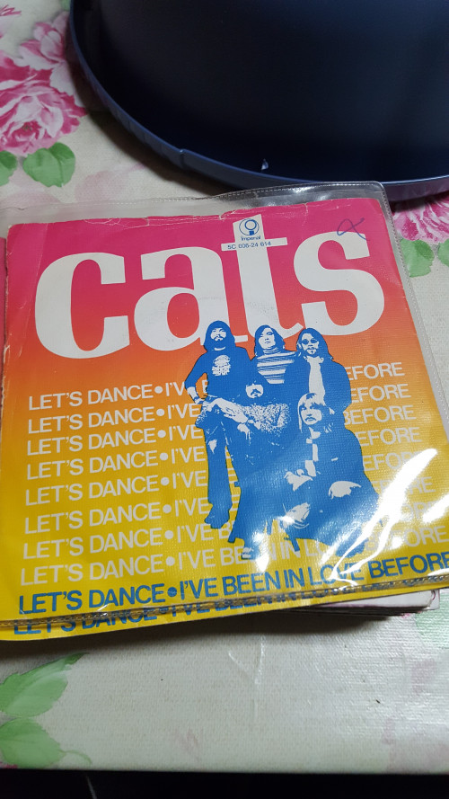 single the cats ,lets dance
